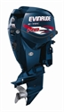 Picture for category Evinrude Engines
